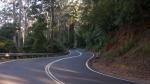 Straße zum Dorrigo-Nationalpark