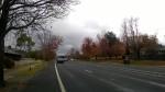 Herbstlich ists geworden. Spätestens seit ich Sydney verlassen habe. Hier auf dem Hume-Highway.