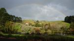 Hügellandschaft südöstlich von Auckland