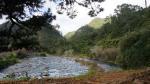 Ohinemuri-River