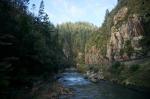 Und weils da ja wirklich so schön war, hier nochmal der Ohinemuri-River.